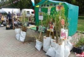 В Саратове начали работать ярмарки для садоводов и дачников на бесплатной основе.